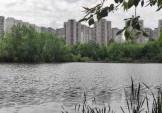 Продовження розчистки Жандарки та благоустрою території навколо озера – замовник КП «Плесо»