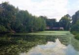Стартувало розчищення озера Підбірна!