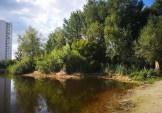 Труксори закінчили розчистку озера Жандарка